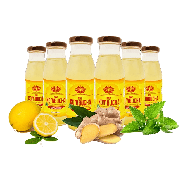 Lemon Ginger & Mint – 6 Pack ( 300ml Bottles Each )