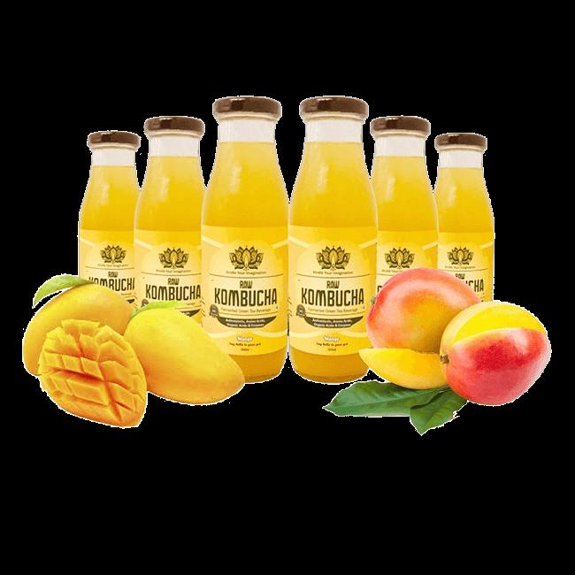 Mango – 6 Pack (300ml bottles)