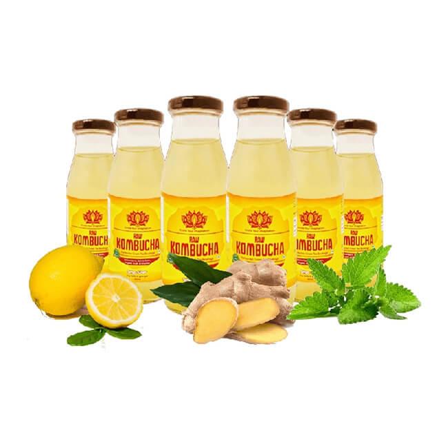 Lemon Ginger & Mint – 6 Pack ( 300ml Bottles Each )